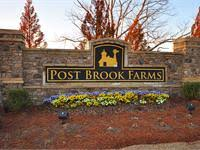 Cumming Post Brook Farms Suwanee Duluth Gainesville Homes For Sale