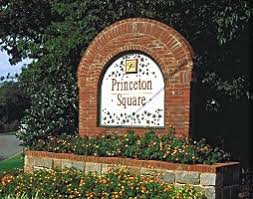 Cumming Princeton Square Suwanee Duluth Gainesville Homes For Sale